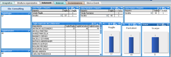 Business_intelligence_qlik_view_INDUMENTI_CONSEGNATI_580