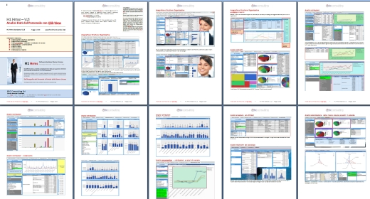 Business Intelligence Qlik View area Risorse Umane e Personale - collegate ad H1 Hrms -- (qlikview)